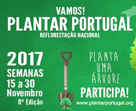 Reflorestação Nacional